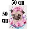 Картины по номерам 50х50 см