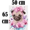 Картины по номерам 50х65 см