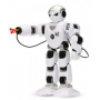 Игрушечные роботы на радиоуправлении
