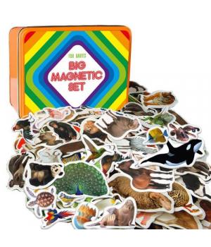 "[ML4032-24 EN] Magnetic set 5 in 1 ""Animals only"" ML4032-24 EN"