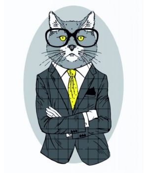 "Картина по номерам ""Fashion Cat"" ★☆☆ N00013266 35х45 см"