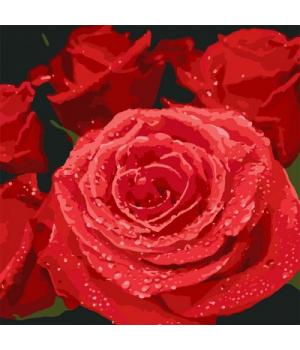 """Картина по номерам """"Красные розы"""" ★★★★ КНО3089"""