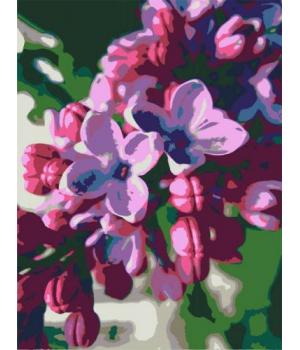 """Картина по номерам """"Сирень"""" ★★☆ N00013176 35х45 см"""