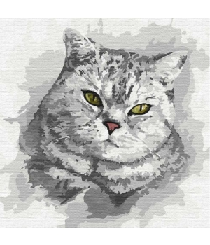 "Картина по номерам ""Зеленоглазый взгляд"" ★★★ КНО4200 30х30 см"