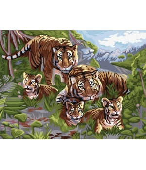 """Картина по номерам """"Семья тигров"""" KpNe-03-06 40х30 см"""