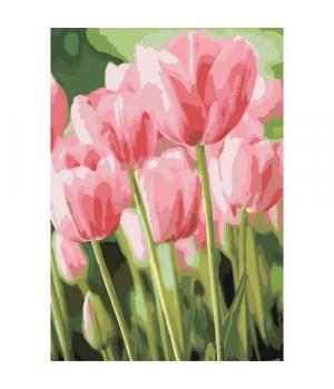 """Картина по номерам """"Весенние тюльпаны"""" ★★★ КНО2069 35х50 см"""