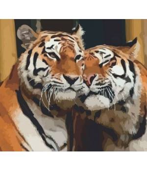 "Картина по номерам ""Влюблённые тигры"" ★☆☆ N00013245 35х45 см"