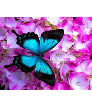 "Алмазная мозаика ""Бабочка в цветах"" EJ1053"
