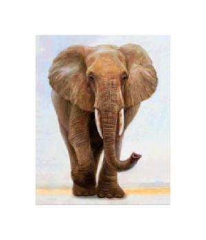 """Алмазная мозаика """"Величественный слон"""" FA40162 40х50 см"""